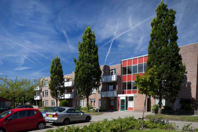Luifel 32, Hoorn